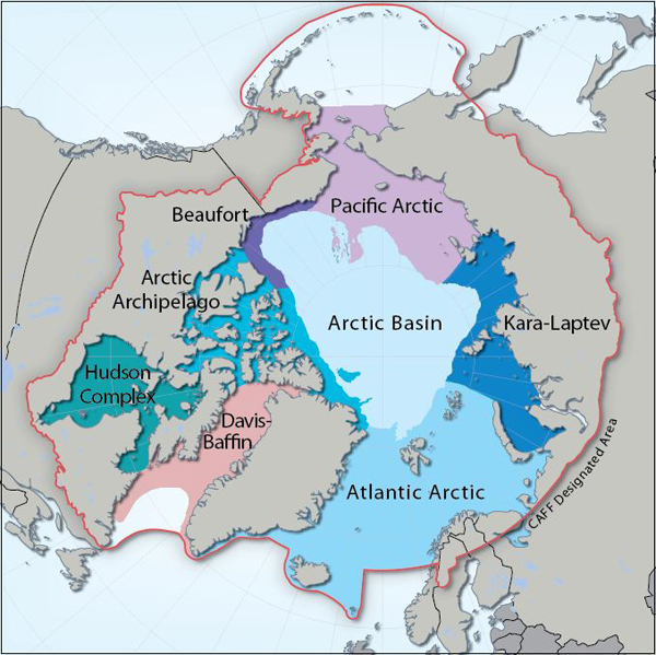 Arctic Marine Areas, Image by Hugo Ahlenius, Nordpil