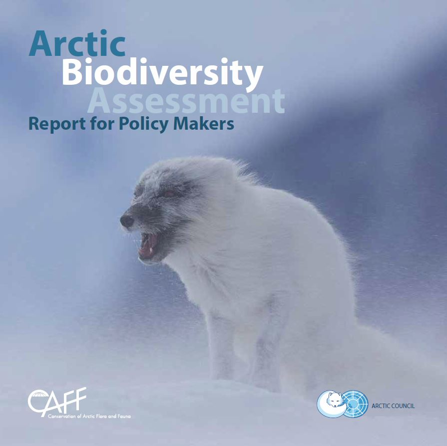 Arctic Biodiversity Assessment Report for Policy Makers. Photo: Carsten Egevang