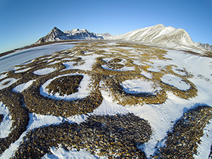 Spitsbergen. Photo: Incredible Arctic /Shutterstock.com