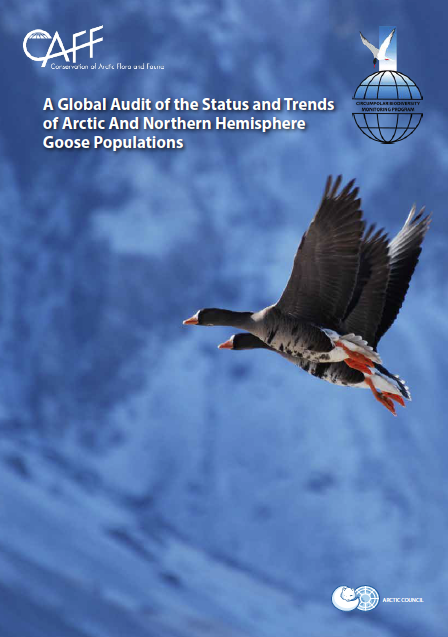 Circumpolar Seabird Expert Group (CBird) Implementation Update U.S.A., 2019