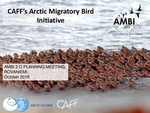 CAFF's Arctic Migratory Bird Initiative