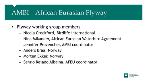 AMBI –African Eurasian Flyway